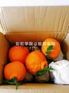 天貓優惠券推薦,不知火醜橘領取優惠券16.9元5斤原產地發貨