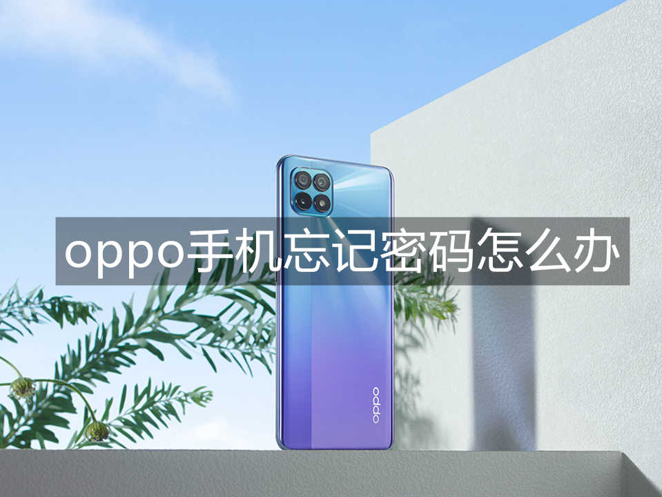 oppo手机忘记密码怎么办_oppo手机忘记密码怎么解锁